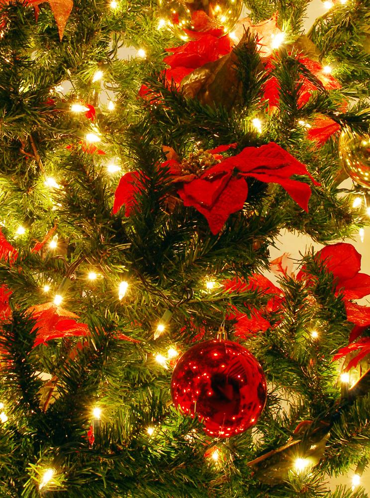 christmas-series-1309040-1279x1718