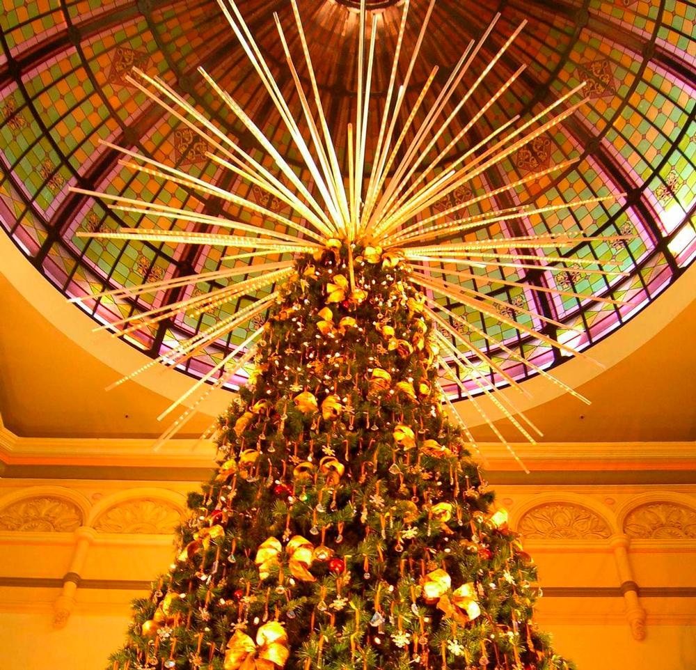 christmas-tree-1383269-1279x1230