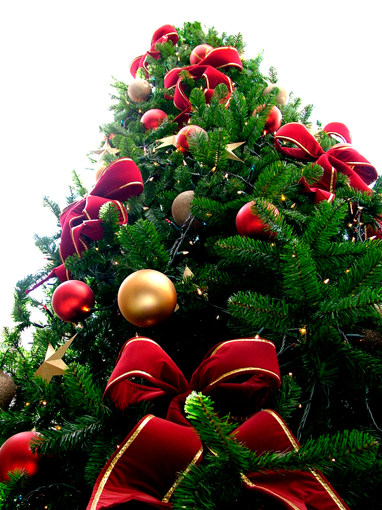 christmas-tree-1516418